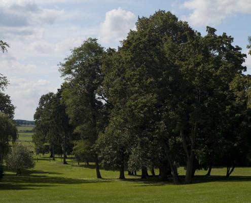 Sichtachsen im Zinzower Schlosspark