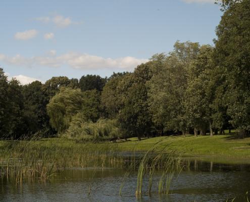 Der Teich im Schlosspark Zinzow