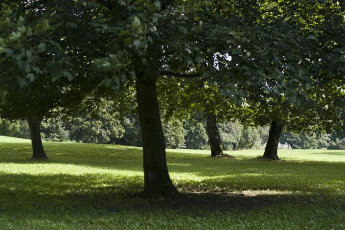 Ein schattiges Plätzchen im Schlosspark
